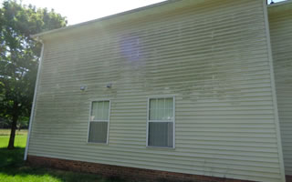 Algae Removal From Siding