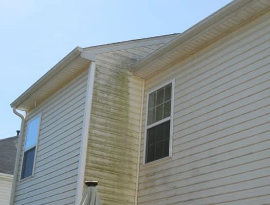 Power Washing House Washing Algae Removal Charlotte Nc